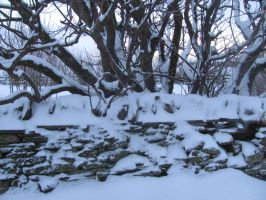Snow on Stone Wall, Scotland by SheepSlave