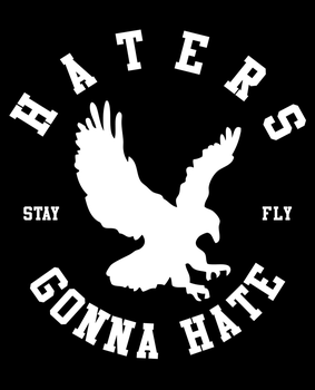 Haters Gonna Hate by fightignorance