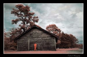 Old Wood Infrared by Enkased