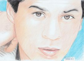 Shah Rukh Khan by creativebarbwire