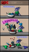 Undivided: Laundree by Snowfyre