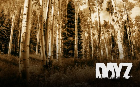 DayZ Forest by onehalfkiller by onehalfkiller