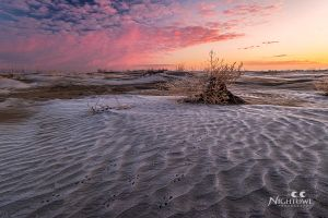 Frosty Sand 2 by MarshallLipp