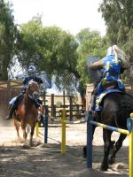 EvenMore Knight Joust Stock 12 by tursiart