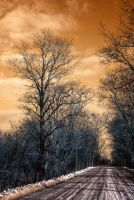 The Path by c-rusted