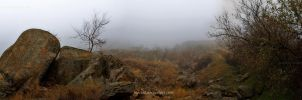 into the mist by inocent