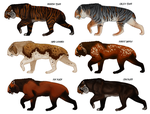 Speculative Smilodon colors by Viergacht