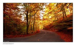 Autumn Road_7 by Marcello-Paoli