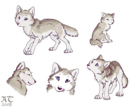 Little wolf pup by ChildProdigy7