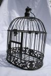 Birdcage 2 by tsb-stock