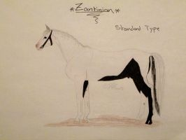 Zantinian Horse Breed by ObsidianFarm