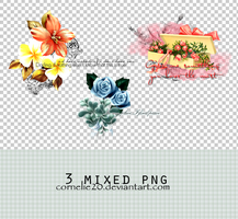 3 mixed png. by Cornelie20