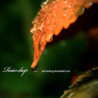 rain drop 1 by derrickfong