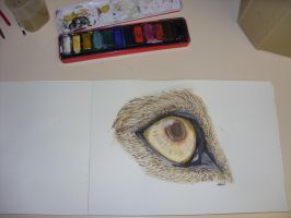 .:The Eye Of The Beast:. by ThePaintingWolf
