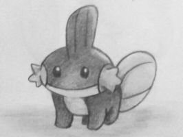 Mudkip by candy-spazz-tabby
