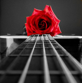 Love and Music by naveS