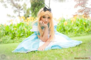 Alice 7 by RikaHaruMoonbeam