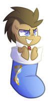 Doctor Whooves stocking by Left2Fail