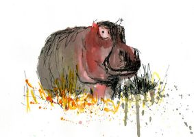 hippo by zileart
