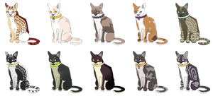 Name Your Price [closed] by MeowTerrAdopts