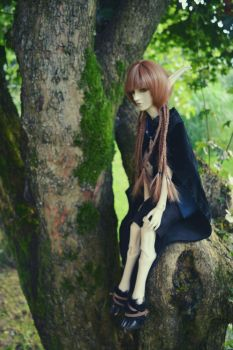 BJD - Nature is my home by QueenofGalaxia