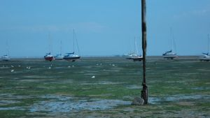 Leigh-On-Sea No23 by The-Lionface