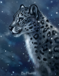 Snow leopard by FlashW