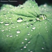 Droplet by AljoschaThielen