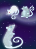 In memory of my rats by Villainess-Vi