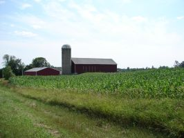Wisconsin Dairyland Farm 2 by FantasyStock