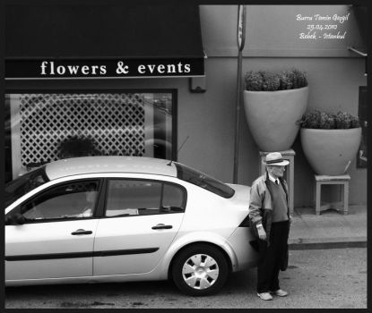 flowers events and a shop by princessfromsea