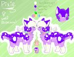 Pixie Reference sheet by coffaefox