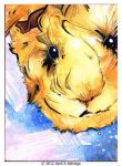 ACEO 10/07/12 Guinea Pig by April-A