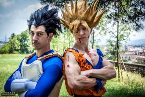 Goku And Vegeta by Alexcloudsquall