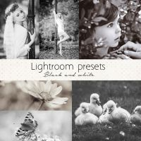 Black and white lightroom presets by Pamba