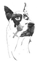 Harlequin Pointillism by Catwoman69y2k