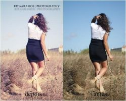 Photoshop actions by ritaaramos