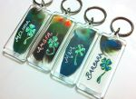 Four Leaf Clover Feather Keychains by dittin03