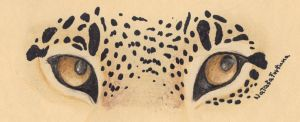 Eyes of the Leopard by LionessFortune