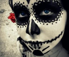 Day of the Dead 1. by RottenVenom