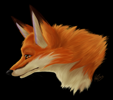 Fox Headshot by Senshee