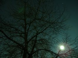 Night Shots LIX by Alluringraphy