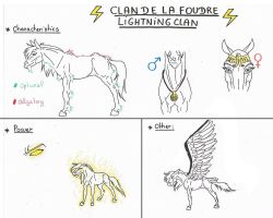 All about the Lightning Clan by Aspi-Galou