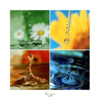 Four seasons by topinka