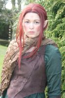 Elven Guard by D2SCosplay