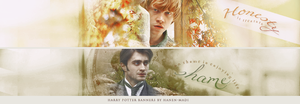 Harry Potter Banners by Hanen-Madi