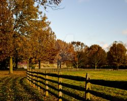 Down The Fence Line by Ryan-Warner
