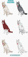 Swedish elkhound colors by NocteBruti