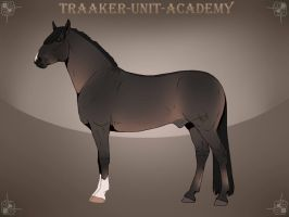 Traaker import 162   5starburst by BRls-love-is-MY-Live