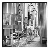 2017-117 Brewing at Warhorse by pearwood
